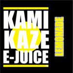 kamikaze (12)