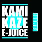 kamikaze (21)