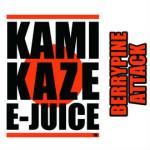 kamikaze (5)